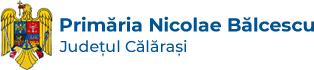 Primaria Nicolae Balcescu